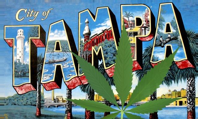 tampa cannabis