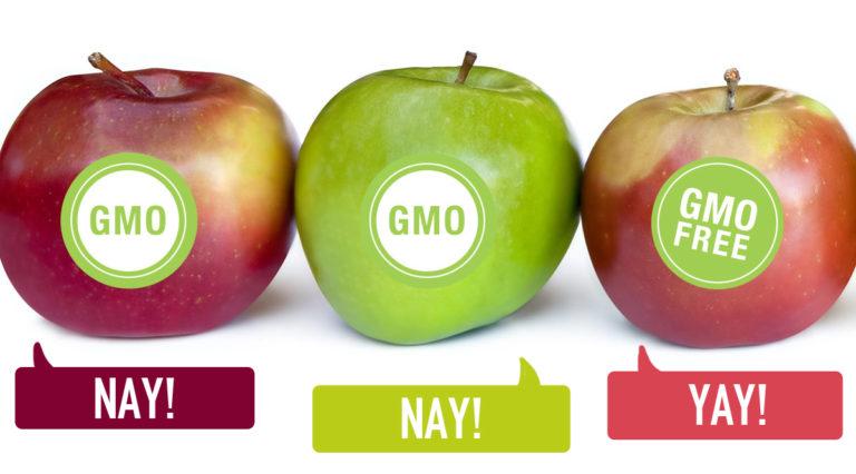 Gmo foods good or bad