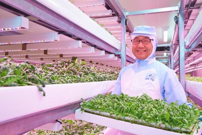 Japan Tries Radiation-Free, Pesticide-Free Vertical Farming With LED Lights