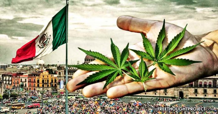 Mexico Just Legalized Medical Cannabis Nationwide Exposing America's Oppression