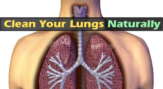 Natural Way To Clear Your Lungs Of Tar and Tobacco Byproducts