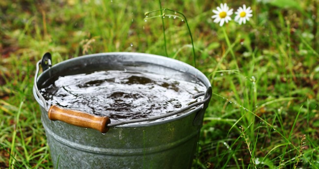 Government Criminalizing Rainwater Collection in All Out War on Self Sufficiency