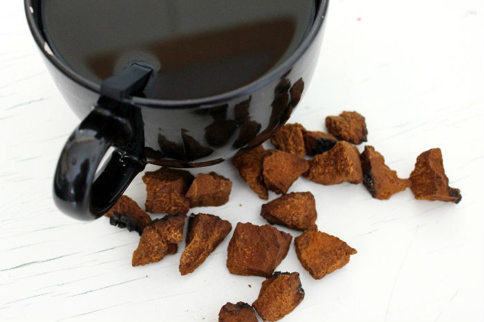 Chaga Tea A Powerful Weapon Against Cancer