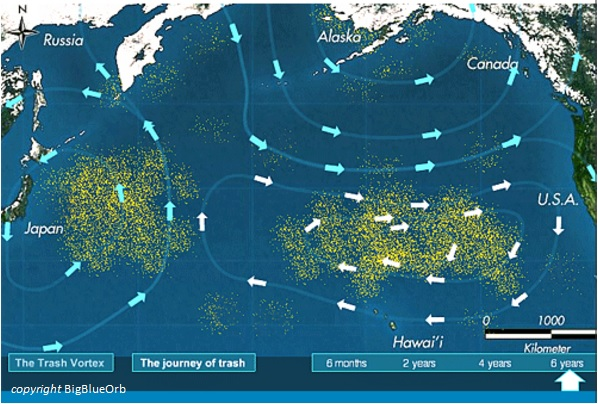 "Millions Of Tons Of Garbage Are Swirling In The Pacific Ocean ""Trash Vortex"""