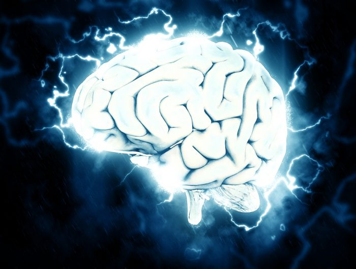 The Science Behind the Human Brain – Protecting Your Most Vital Organ