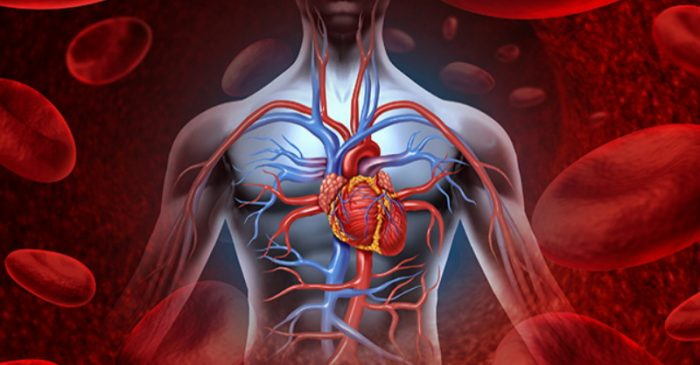 New Study Adds to Evidence of Diabetes Drug Link to Heart Problems