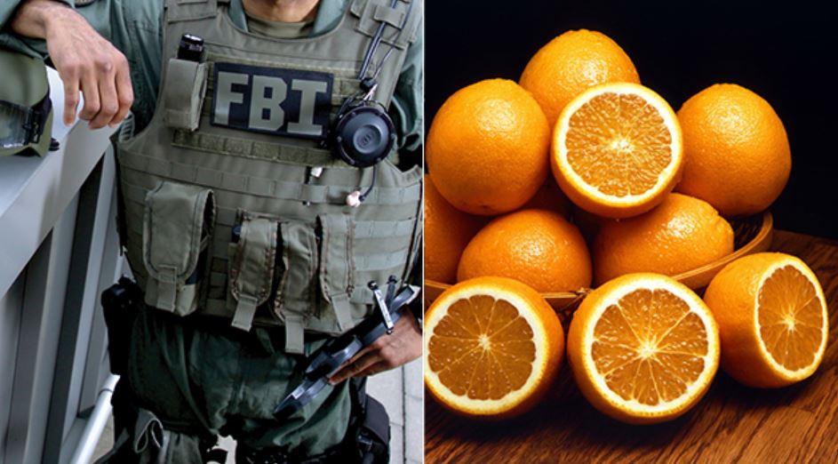 COVID19 UPDATE - FBI Raids Detroit-Area Medical Facility 'For Using Intravenous Vitamin C plus MORE Fbi-vitamin-c