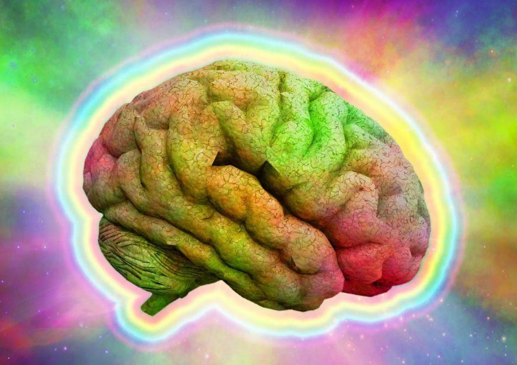Estudo sugere que microdoses de LSD podem substituir opiáceos para o controle da dor 2