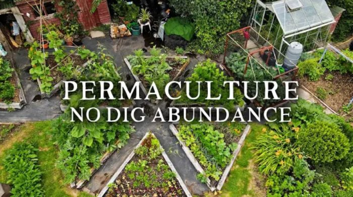 Beautiful No Dig Permaculture Kitchen Garden — Small-Scale Potager Style Vegetable Garden