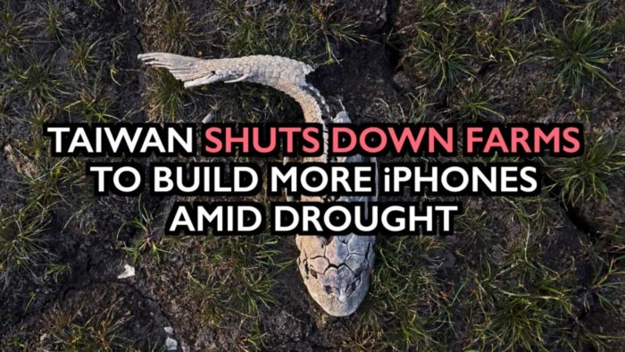 Taiwan Shuts Down Farms to Build More iPhones — Destruction of Food Supply